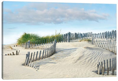 Beachscape III Canvas Art Print