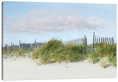 Beachscape IV Canvas Art Print