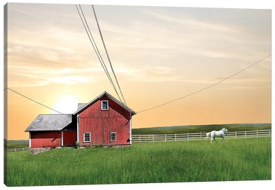 Farm & Country IV Canvas Art Print