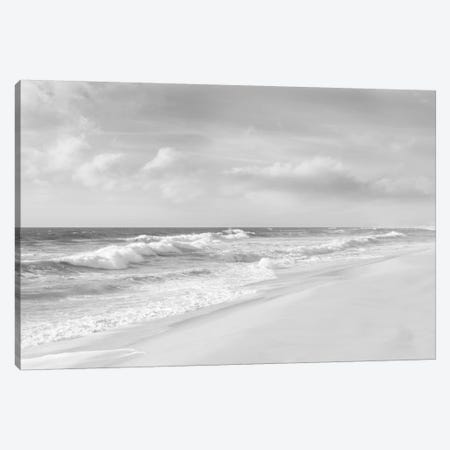 Hamptons V Canvas Print #JML5} by James McLoughlin Canvas Print