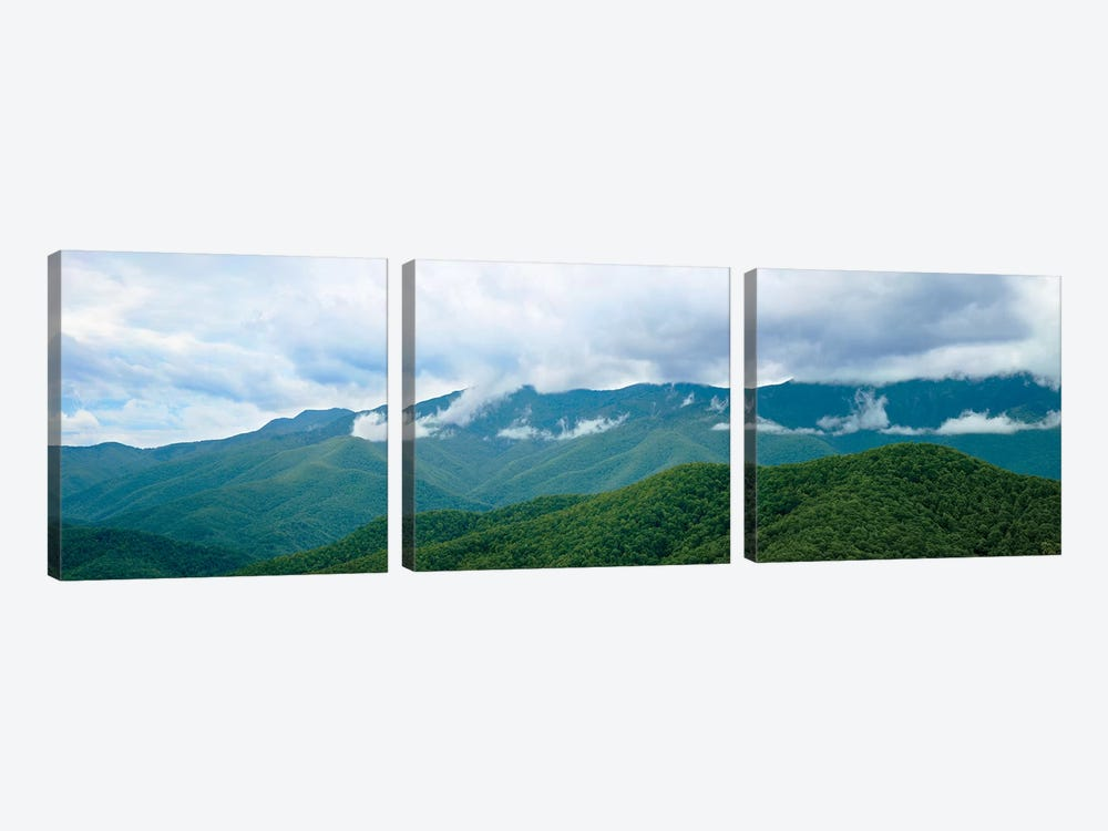 Misty Mountains II by James McLoughlin 3-piece Art Print