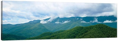 Misty Mountains II Canvas Art Print