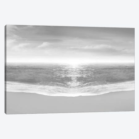 Hamptons VI Canvas Print #JML6} by James McLoughlin Canvas Print