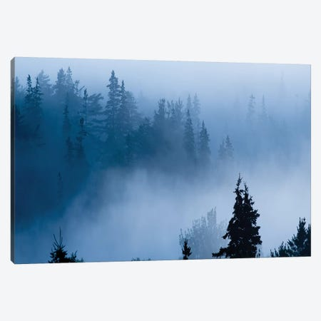 Misty Mountains XV Canvas Print #JML74} by James McLoughlin Art Print