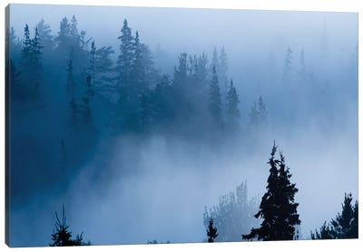 Misty Mountains XV Canvas Art Print