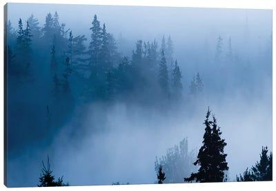 Misty Mountains XV Canvas Art Print