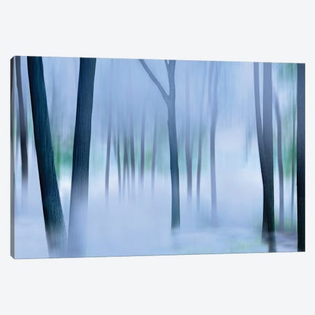 Misty Mountains XVI Canvas Print #JML75} by James McLoughlin Art Print