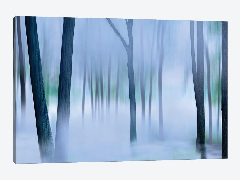 Misty Mountains XVI by James McLoughlin 1-piece Canvas Art
