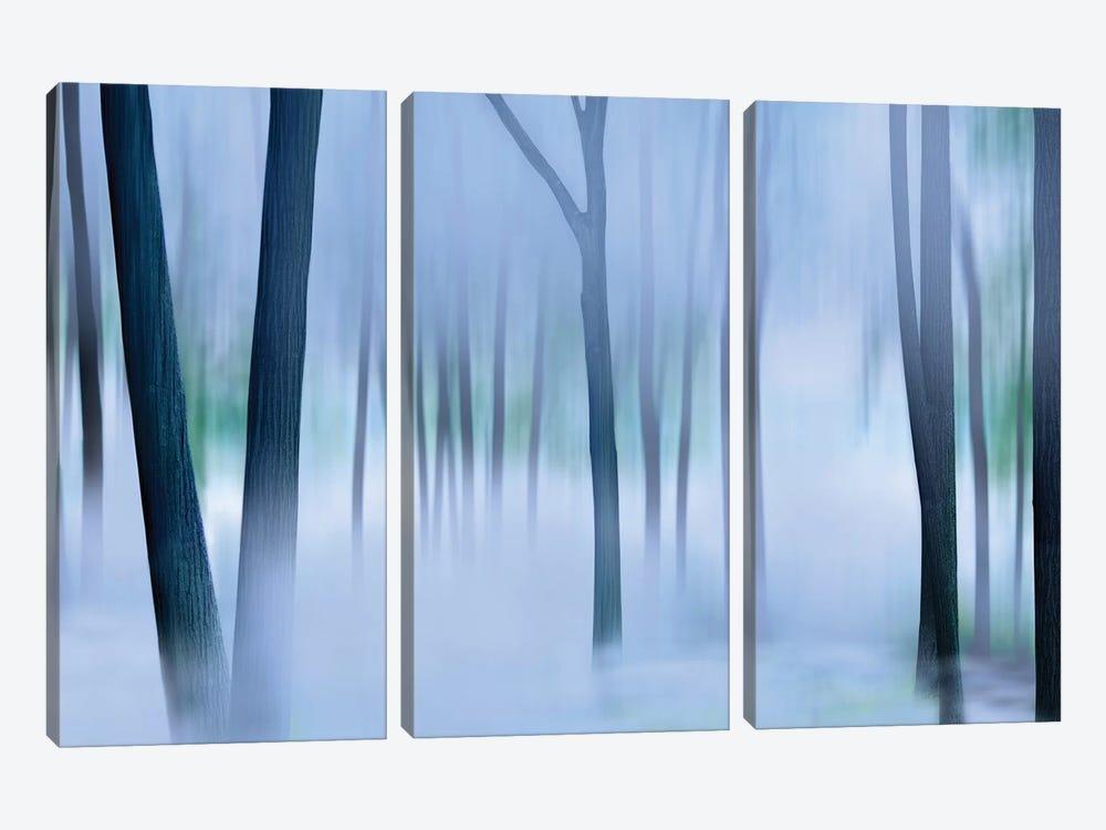 Misty Mountains XVI by James McLoughlin 3-piece Canvas Art