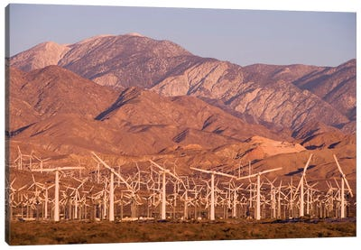 A wind farm in the San Gorgonio Mountain Pass in Palm Springs, California. Canvas Art Print