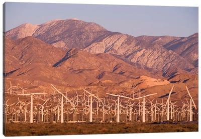 A wind farm in the San Gorgonio Mountain Pass in Palm Springs, California. Canvas Art Print
