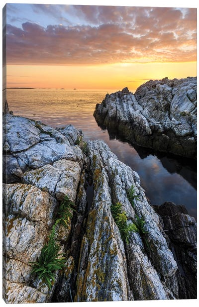 Sunrise on Appledore Island in the Isles of Shoals, New Hampshire I Canvas Art Print