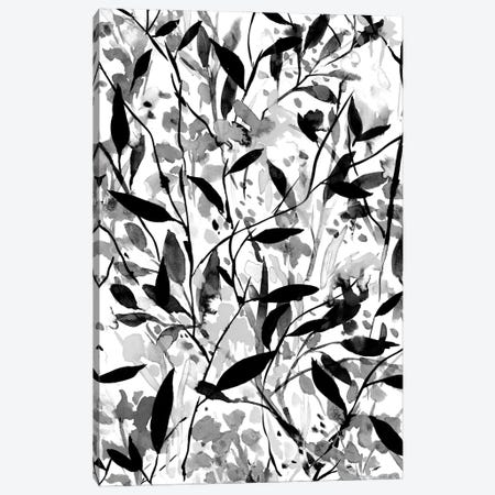Wandering Wildflowers Black And White Canvas Print #JMO199} by Jacqueline Maldonado Canvas Wall Art