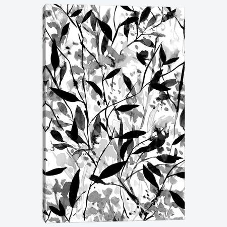 Wandering Wildflowers Black And White Canvas Print #JMO199} by Jacqueline Maldonado Canvas Wall Art