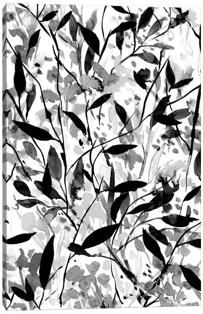 Wandering Wildflowers Black And White Canvas Art Print
