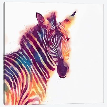 The Aesthetic Canvas Print #JMO19} by Jacqueline Maldonado Canvas Print