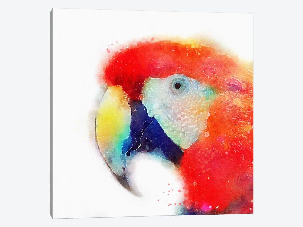 The Articulate by Jacqueline Maldonado 1-piece Canvas Artwork