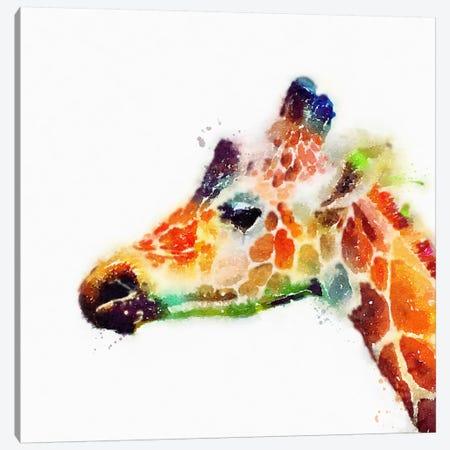 The Graceful Canvas Print #JMO22} by Jacqueline Maldonado Canvas Art