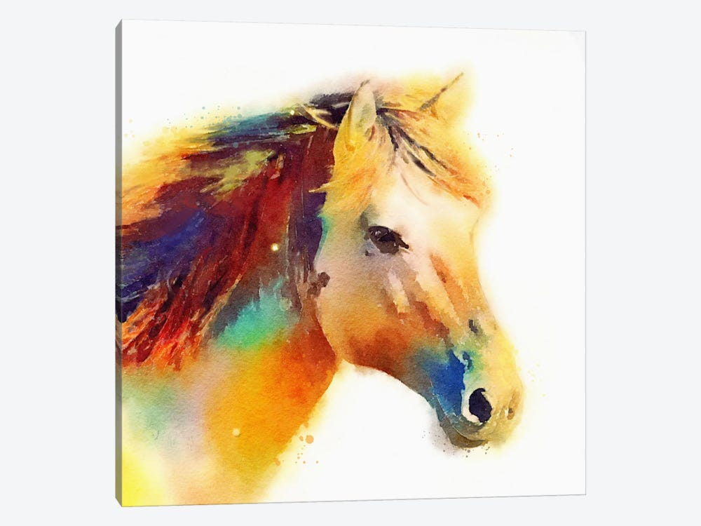 The Spirited by Jacqueline Maldonado 1-piece Canvas Art