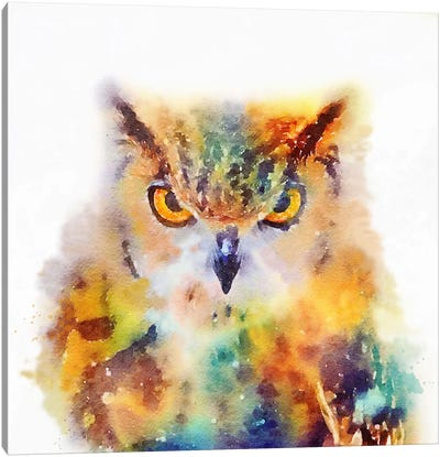 The Wise Canvas Art Print