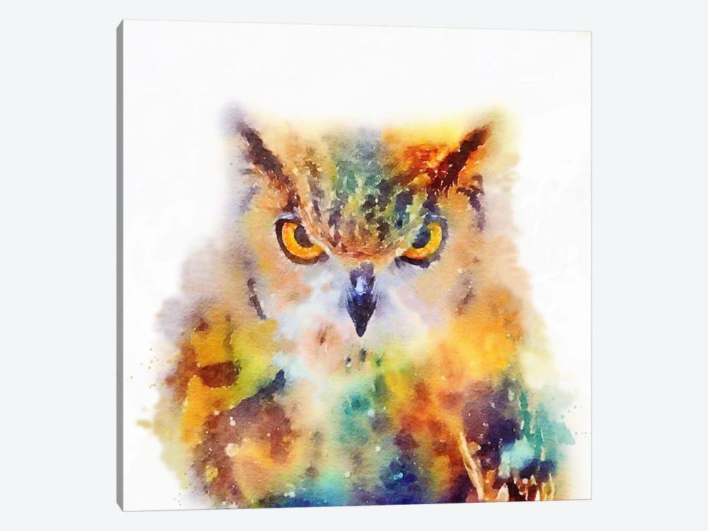 The Wise by Jacqueline Maldonado 1-piece Canvas Art Print