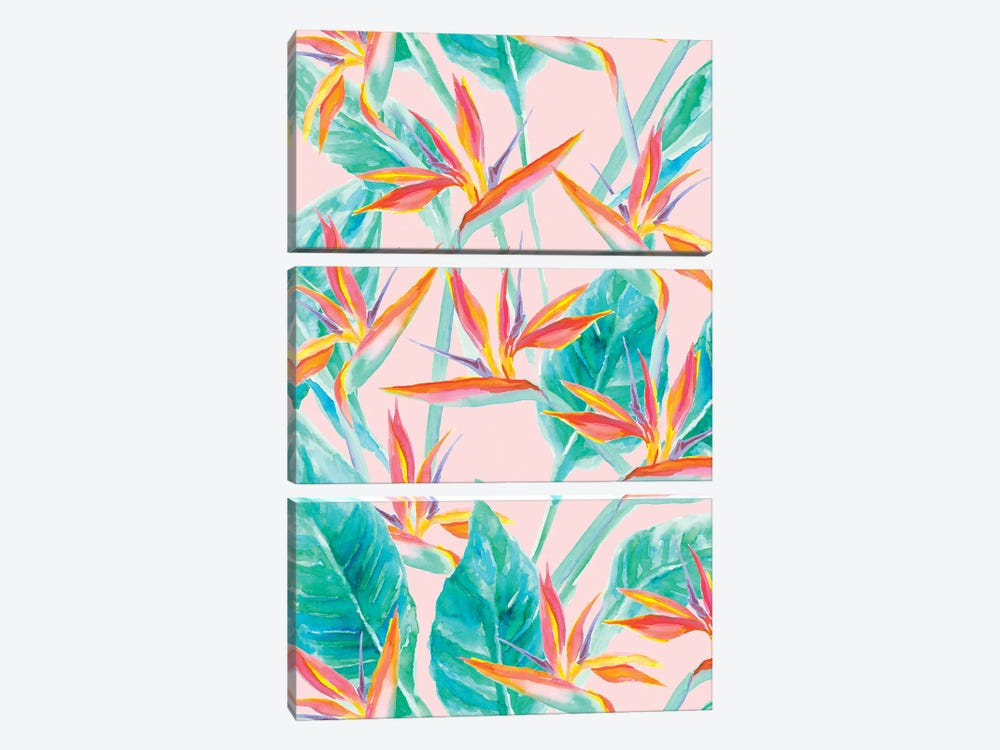 Birds Of Paradise by Jacqueline Maldonado 3-piece Canvas Artwork