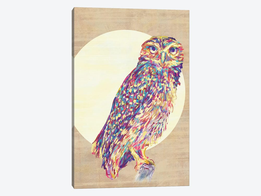 Owls by Jacqueline Maldonado 1-piece Art Print