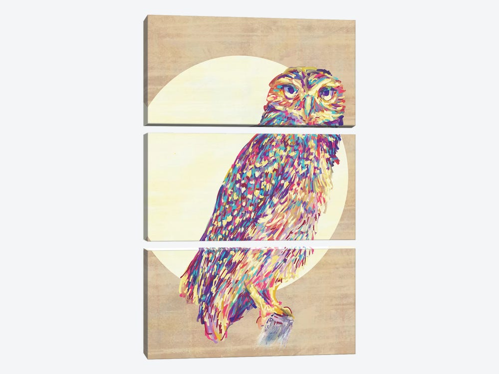 Owls by Jacqueline Maldonado 3-piece Canvas Art Print