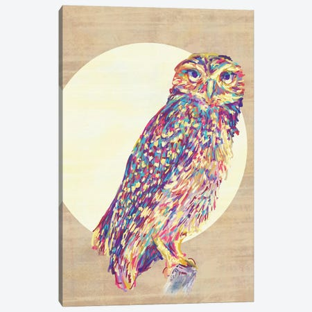 Owls Canvas Print #JMO94} by Jacqueline Maldonado Canvas Artwork