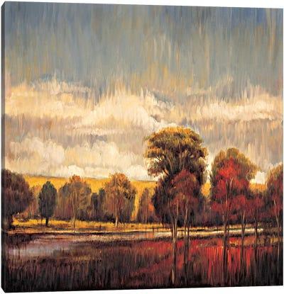 Quiet River I Canvas Art Print