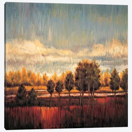 Quiet River II Canvas Print #JMS2} by James Bryant Canvas Art