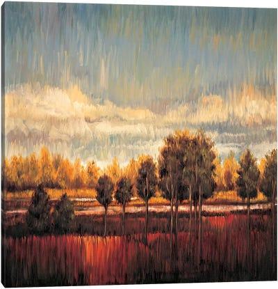 Quiet River II Canvas Art Print