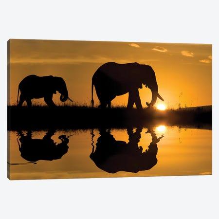 Elephants at Sundown 3-Piece Canvas #JMZ8} by Jimmyz Art Print