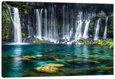 Shiraito Falls Canvas Art Print