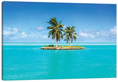 Small Island On Bora Bora Canvas Art Print