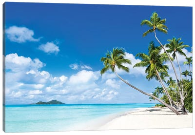 Tropical Beach With Palm Trees Canvas Art Print