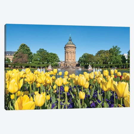 Tulip Flowers At The Wasserturm In Mannheim In Spring Canvas Print #JNB1243} by Jan Becke Canvas Art