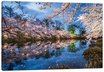 Sakura Festival At Takada Castle, Joetsu, Niigata Prefecture, Japan Canvas Art Print