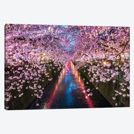 Nakameguro Cherry Blossom Festival, Tokyo Canvas Print #JNB1484} by Jan Becke Art Print