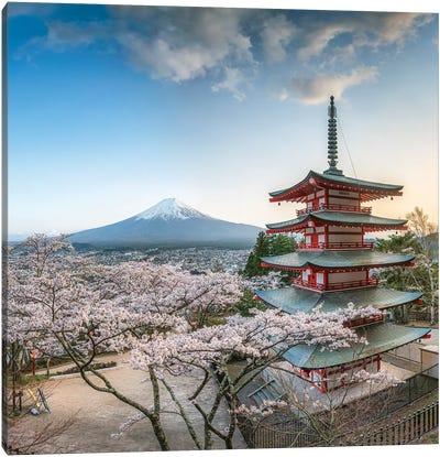 Chureito Pagoda And Mount Fuji During Cherry Blossom Season, Fujiyoshida, Japan Canvas Art Print