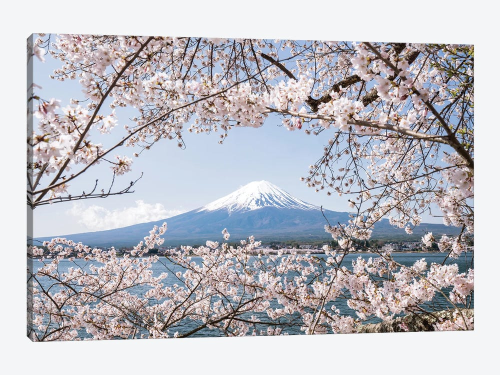 Mount Fuji In Spring With Cherry Blossom Tree by Jan Becke 1-piece Art Print