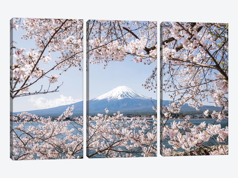 Mount Fuji In Spring With Cherry Blossom Tree by Jan Becke 3-piece Art Print