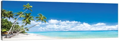 Beach Panorama With Palm Trees Canvas Art Print