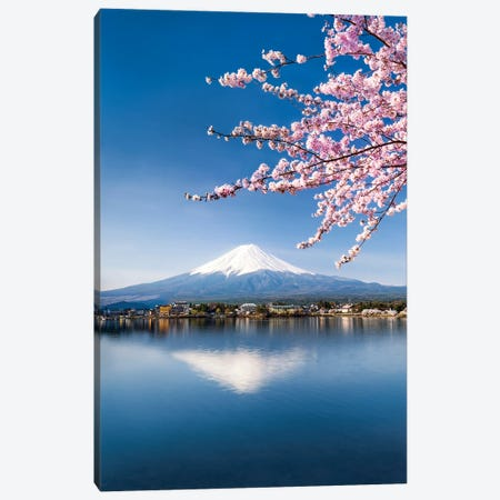 Cherry Blossom And Mount Fuji At Lake Kawaguchiko, Japan Canvas Print #JNB1562} by Jan Becke Canvas Art Print