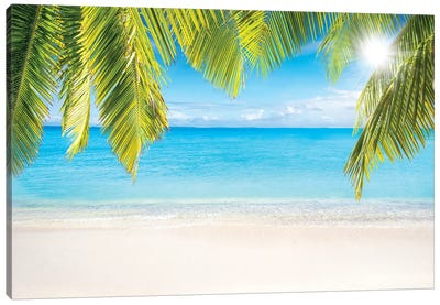 Sunny Beach With Palm Branches Canvas Art Print