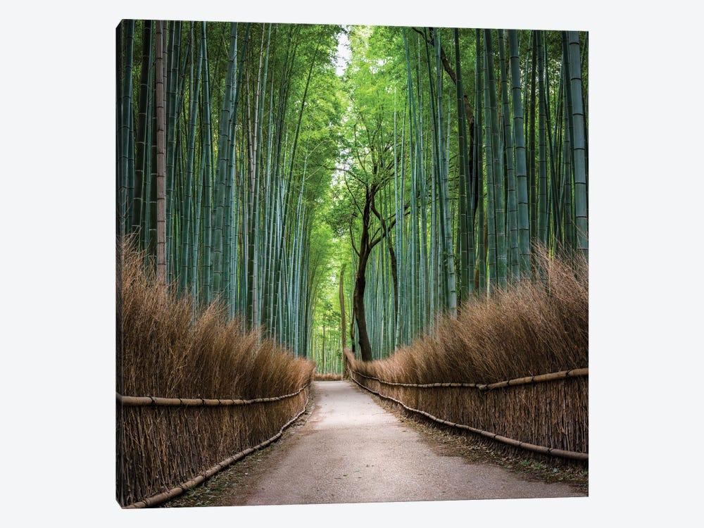 Arashiyama Bamboo Forest, Kyoto, Japan by Jan Becke 1-piece Canvas Art Print