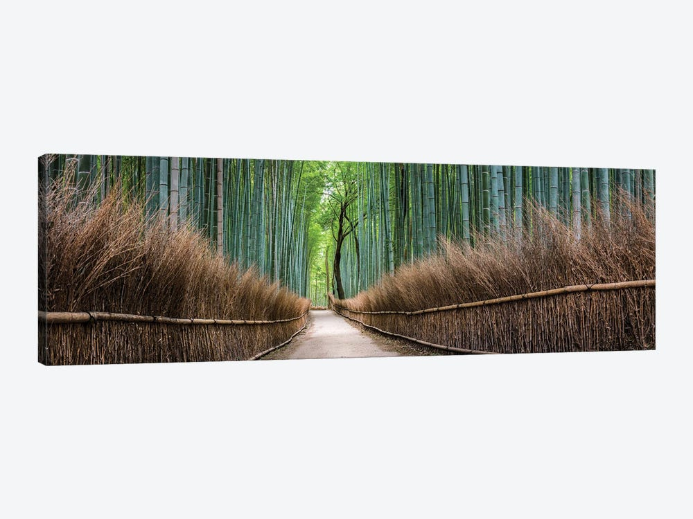 Panoramic View Of The Arashiyama Bamboo Forest, Kyoto, Japan by Jan Becke 1-piece Canvas Wall Art