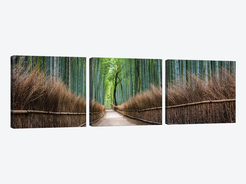 Panoramic View Of The Arashiyama Bamboo Forest, Kyoto, Japan by Jan Becke 3-piece Canvas Wall Art