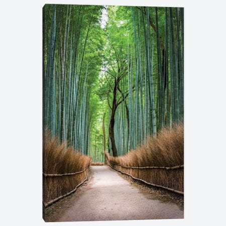 Arashiyama Bamboo Forest In Kyoto, Japan Canvas Print #JNB1598} by Jan Becke Canvas Wall Art