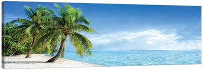 Tropical Beach Panorama With Palm Trees Canvas Art Print